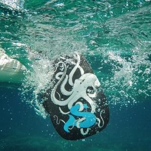SIREN Vollcarbon Paddel Octopus O3