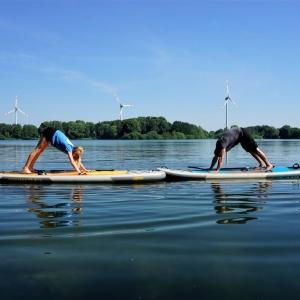 Manatee SUP Board für Yoga im SIREN Shop